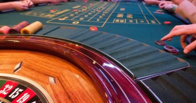 Factors to consider before choosing an online casino game